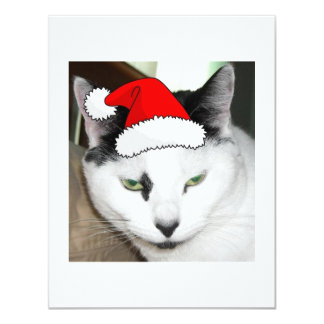 Gatito blanco y negro del navidad anuncio personalizado