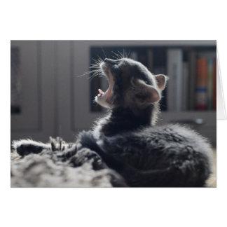 Gatito cansado tarjeta pequeña