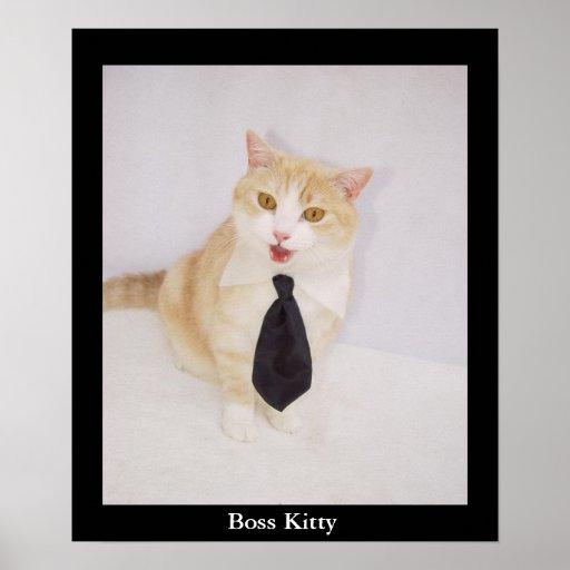 Gatito de Boss Impresiones