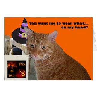Gatito de Halloween - desgaste qué tarjeta