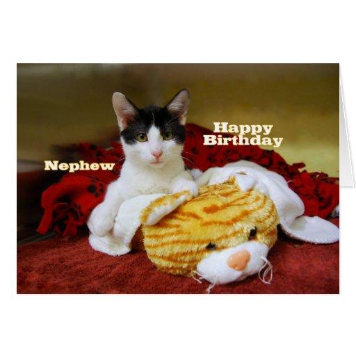 Gatito del feliz cumpleaños del sobrino con el tig tarjeta