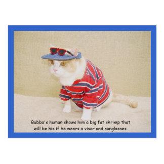 Gatito demasiado fresco de Bubba Postal