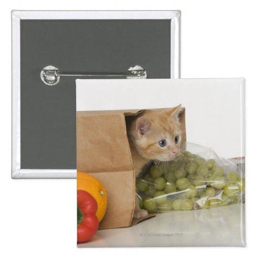 Gatito dentro del bolso de ultramarinos pin
