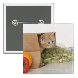 Gatito dentro del bolso de ultramarinos chapa cuadrada 5 cm