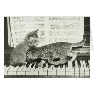 Gatito dos que juega en el teclado de piano tarjeta de felicitación