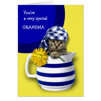 Gatito dulce. Para la abuela en las tarjetas del