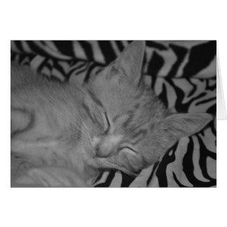 Gatito el dormir tarjeta de felicitación