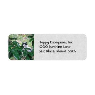 Gatito en las hojas etiqueta de remitente