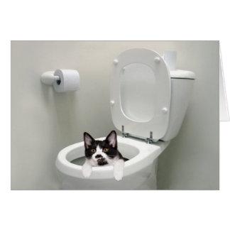Gatito en taza del inodoro tarjeton