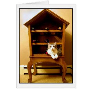 Gatito en una tarjeta del estante del vino