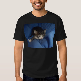Gatito feroz camisetas