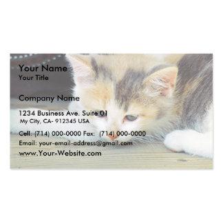 Gatito lindo que pone en piso con la cara triste plantilla de tarjeta personal