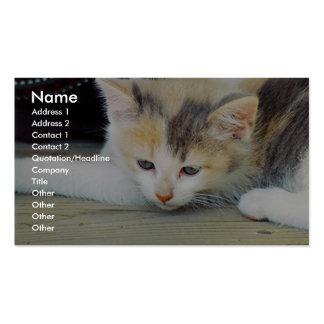 Gatito lindo que pone en piso con la cara triste tarjeta de visita
