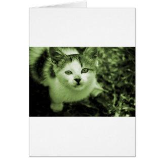 Gatito lindo tarjeta de felicitación