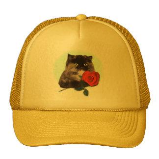 Gatito persa con los regalos y la ropa color de ro gorras de camionero