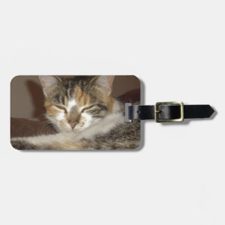 Gatito relajado etiqueta para maletas