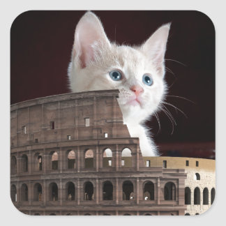 gatito romano pegatina cuadrada