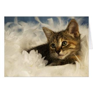 Gatito soñador tarjeta
