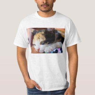 Gatito soñoliento del calicó camisetas