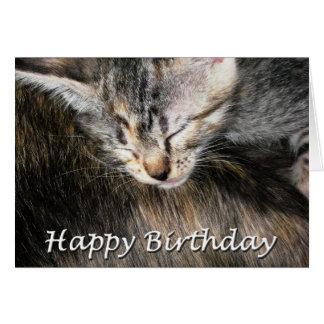 Gatito y gato del feliz cumpleaños tarjeton