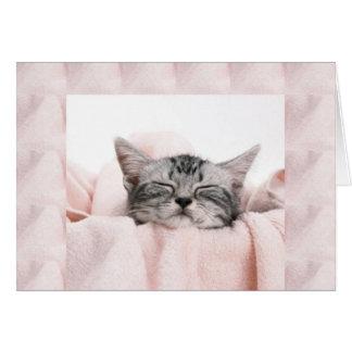Gatito y manta tarjeta