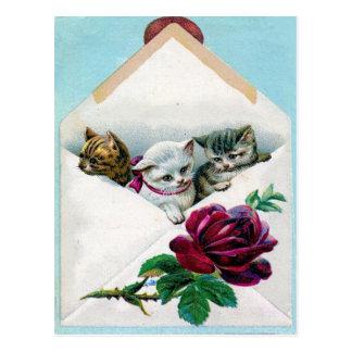 Gatitos de la tarjeta del día de San Valentín Postal