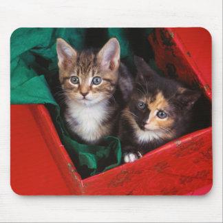 Gatitos del navidad alfombrilla de ratón