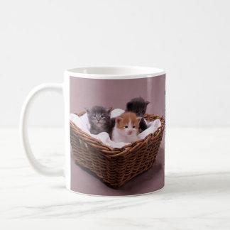 Gatitos en una cesta tazas de café