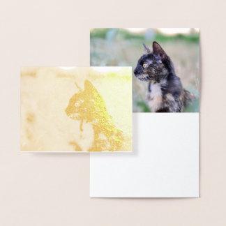 Gato alerta del gatito - diseño de tarjeta del