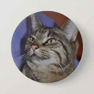 Gato Amigo-Gris peludo de la raya del tigre Chapa Redonda De 7 Cm