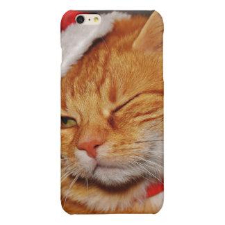 Gato anaranjado - gato de Papá Noel - Felices