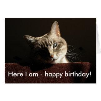 Gato: ¡Aquí soy - feliz cumpleaños! Tarjeta De Felicitación