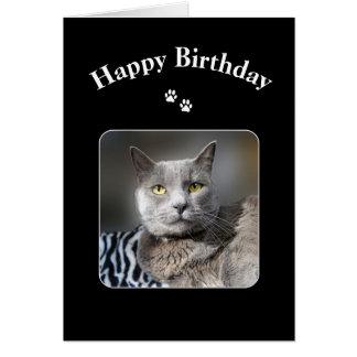 Gato azul ruso del feliz cumpleaños tarjeta de felicitación