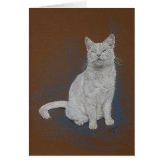 gato, blanco, feliz cumpleaños, bella arte tarjeta de felicitación