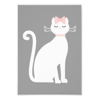 Gato blanco lindo fotografias