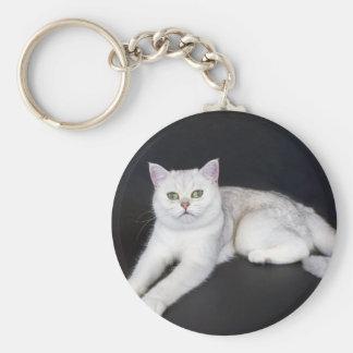 Gato blanco que miente en fondo negro aislado llavero