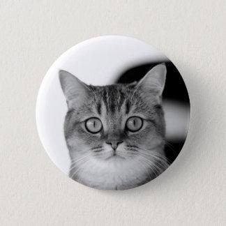Gato blanco y negro que mira derecho usted chapa redonda de 5 cm