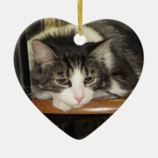 Gato bonito en silla ornamento para arbol de navidad
