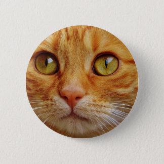 gato chapa redonda de 5 cm