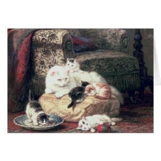 Gato con sus gatitos en un amortiguador tarjeton