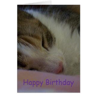Gato cristiano de la tarjeta del feliz cumpleaños