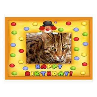 Gato de Bengala de la postal del cumpleaños