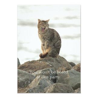Gato de bostezo en la invitación de las rocas invitación 12,7 x 17,8 cm