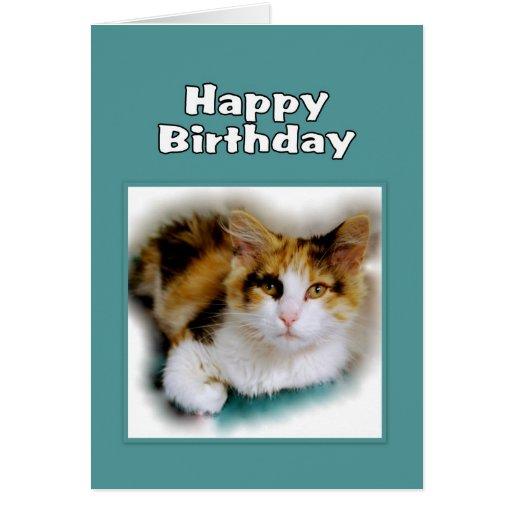 Gato de calicó del feliz cumpleaños felicitacion