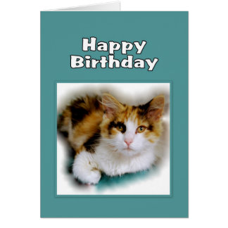 Gato de calicó del feliz cumpleaños tarjeta de felicitación