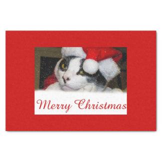 Gato de /Holiday del navidad en papel seda del