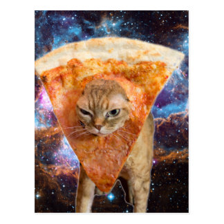 Gato de la pizza en rebanada de la pizza del postal