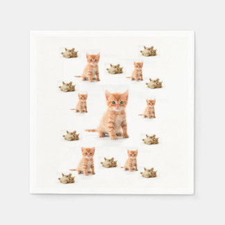 Gato de las servilletas de papel