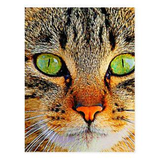Gato de ojos verdes fascinador postal