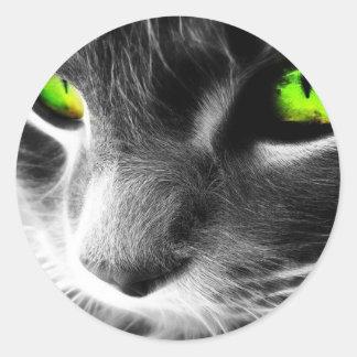 Gato de ojos verdes pegatinas redondas